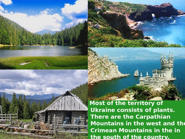 Most of the territory of Ukraine consists of plants.  There are the Carpathian