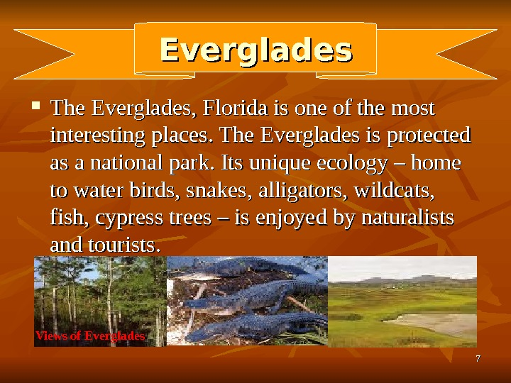 77 Everglades The Everglades, Florida is one of the most interesting places. The Everglades is protected