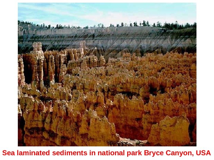 Sea laminated sediments in national park  Bryce Canyon ,  USA