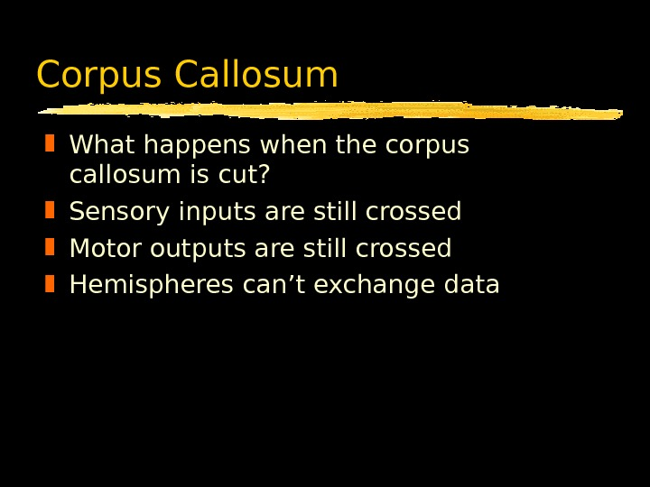 Corpus Callosum What happens when the corpus callosum is cut?  Sensory inputs are still crossed