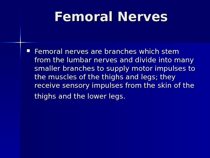 Femoral Nerves Femoral nerves are branches which stem from the lumbar nerves and divide