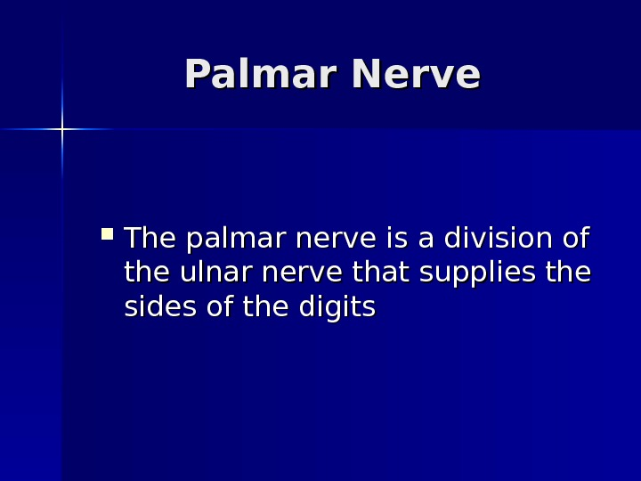 Palmar Nerve The palmar nerve is a division of the ulnar nerve that supplies
