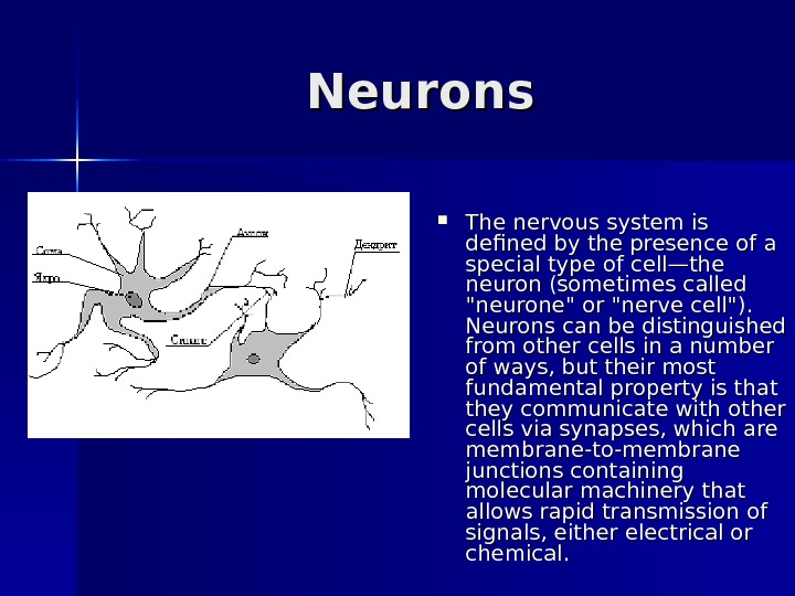 Neurons The nervous system is defined by the presence of a special type of