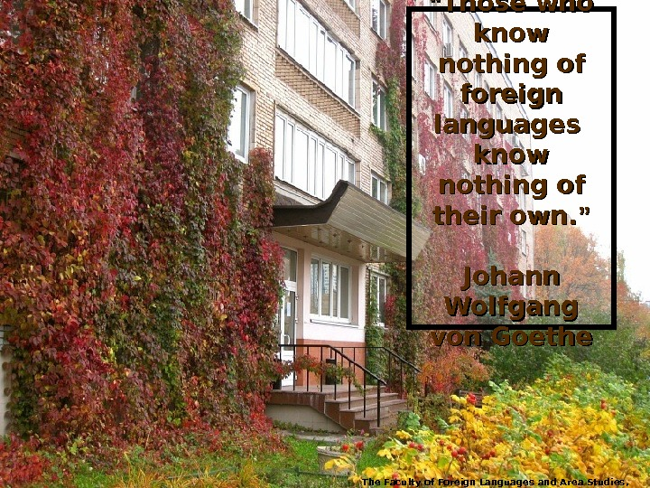 """"" Those who know nothing of foreign languages know nothing of their own. """" Johann Wolfgang"