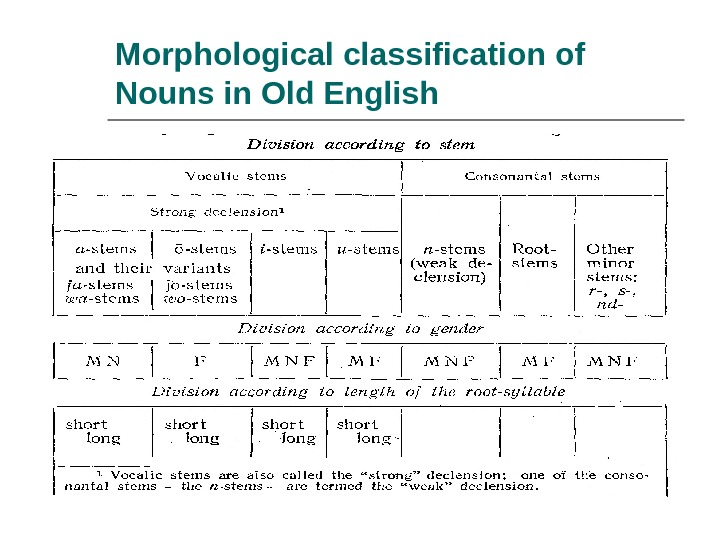 Morphological classification of Nouns in Old English