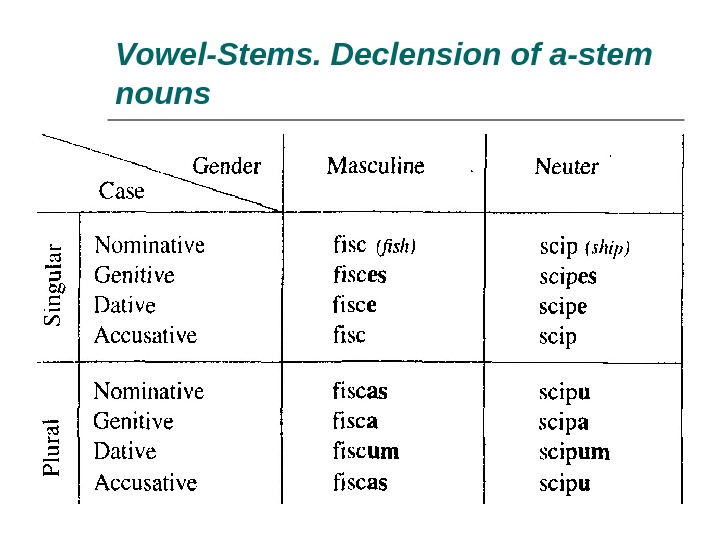 Vowel-Stems. Declension of a-stem nouns