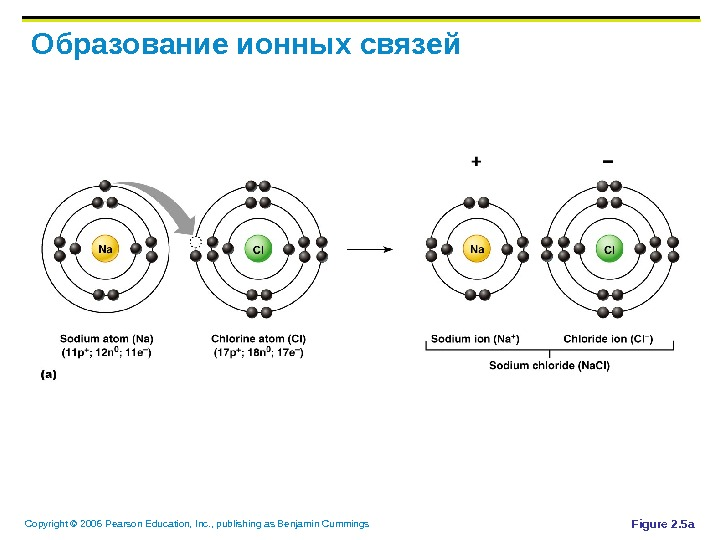 Copyright © 2006 Pearson Education, Inc. , publishing as Benjamin Cummings Образование ионных связей Figure 2.