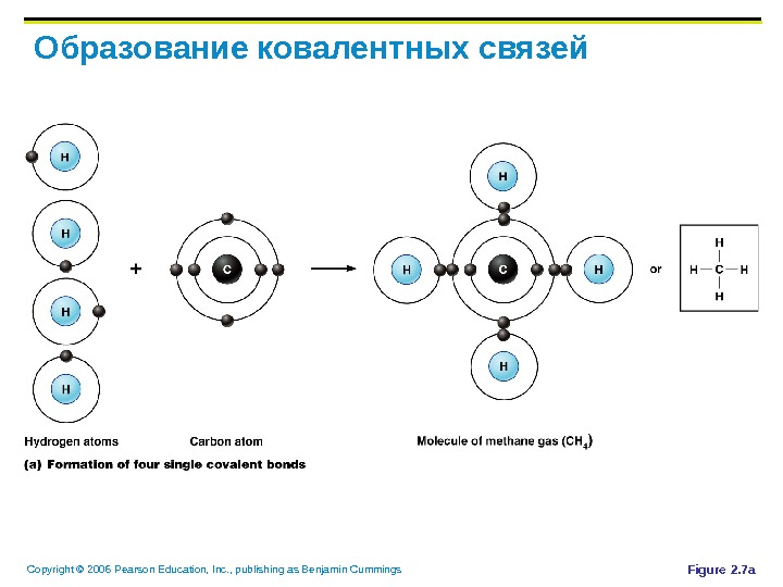 Copyright © 2006 Pearson Education, Inc. , publishing as Benjamin Cummings Образование ковалентных связей Figure 2.