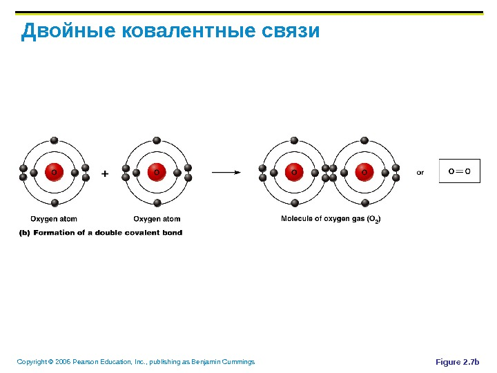 Copyright © 2006 Pearson Education, Inc. , publishing as Benjamin Cummings Двойные ковалентные связи Figure 2.