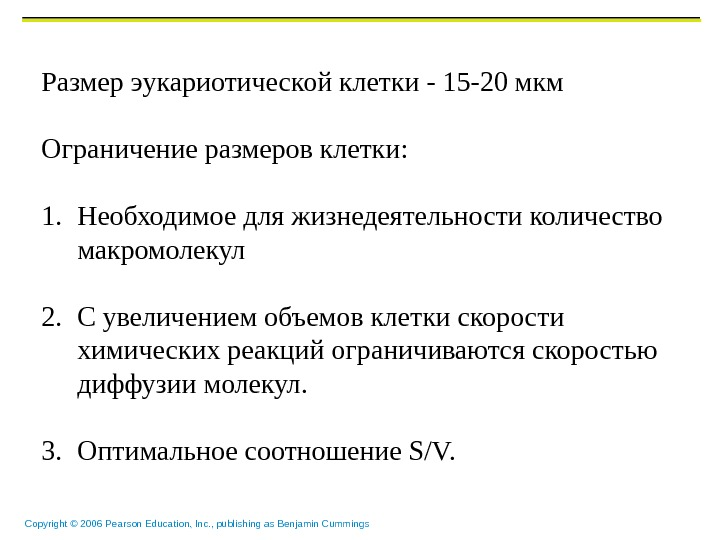 Copyright © 2006 Pearson Education, Inc. , publishing as Benjamin Cummings Размер эукариотической клетки - 15