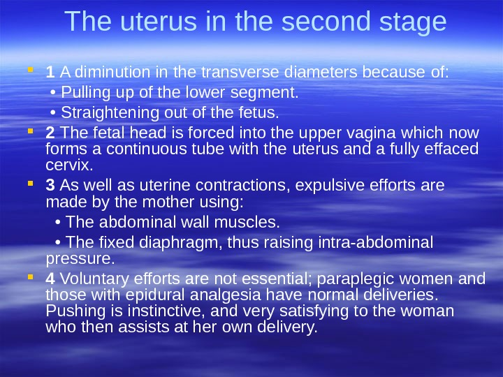 The uterus in the second stage 1 A diminution in the transverse diameters because  of:
