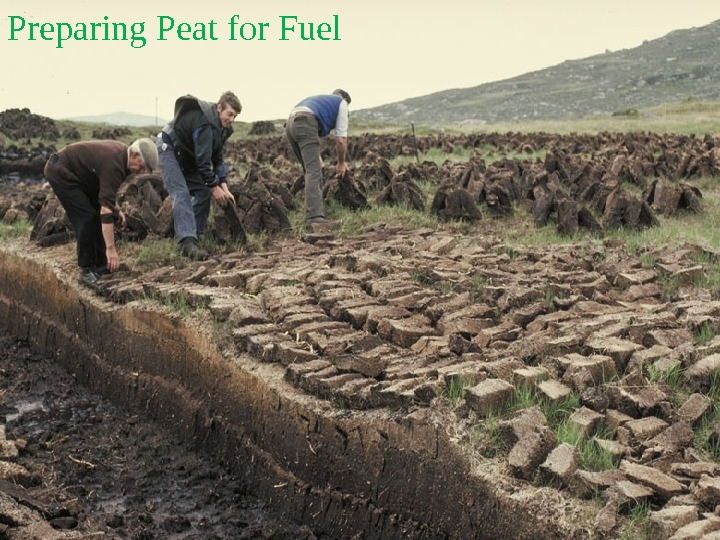 Preparing Peat for Fuel