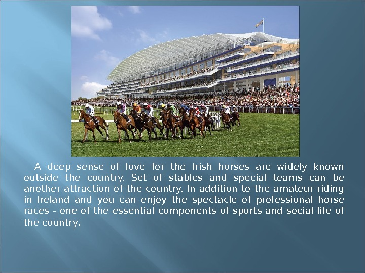 A deep sense of love for the Irish horses are widely known outside the country.