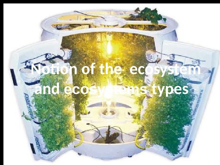 Notion of the ecosystem and its components. Notion of the ecosystem  and ecosystems types