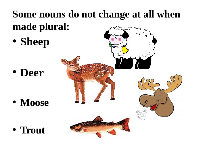 Some nouns do not change at all when made plural:  • Sheep  • Deer