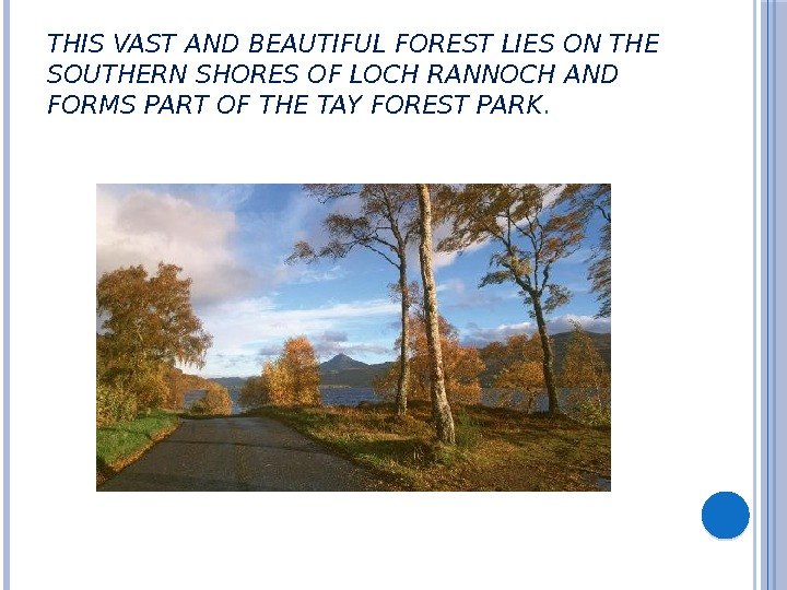 THIS VAST AND BEAUTIFUL FOREST LIES ON THE SOUTHERN SHORES OF LOCH RANNOCH AND FORMS PART