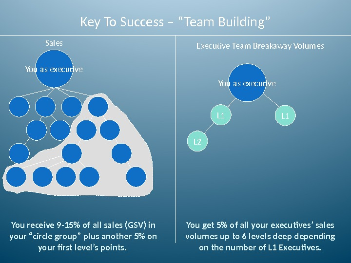 "Key To Success – ""Team Building"" Sales You receive 9 -15 of all sales (GSV) in"