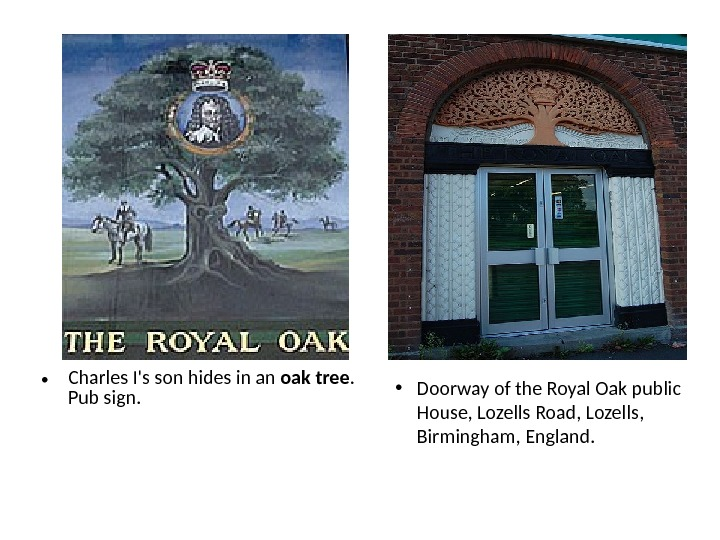 • Charles I's son hides in an oak  tree.  Pub sign.  •