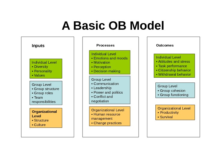 A Basic OB Model Individual Level •  Diversity •  Personality •  Values Group
