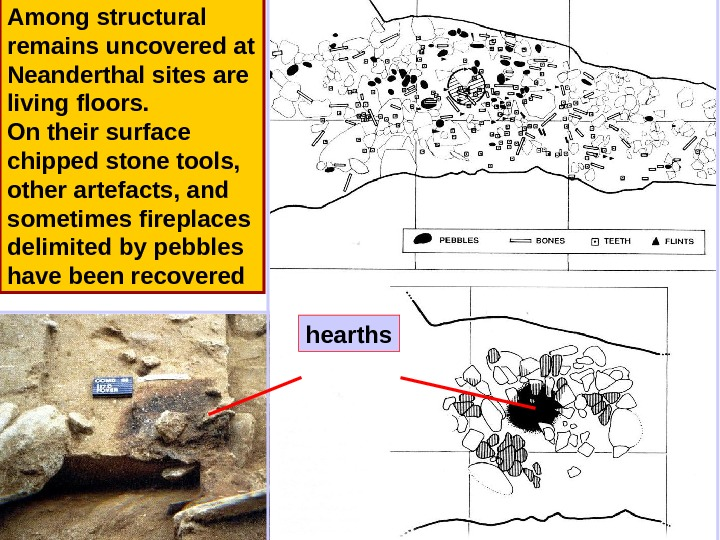Among structural remains uncovered at Neanderthal sites are living floors.  On their surface