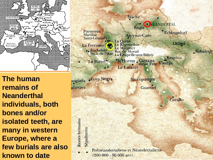 The human remains of Neanderthal individuals, both bones and/or isolated teeth, are many in
