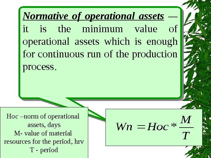 Normative of operational assets  —  it is the minimum value of operational