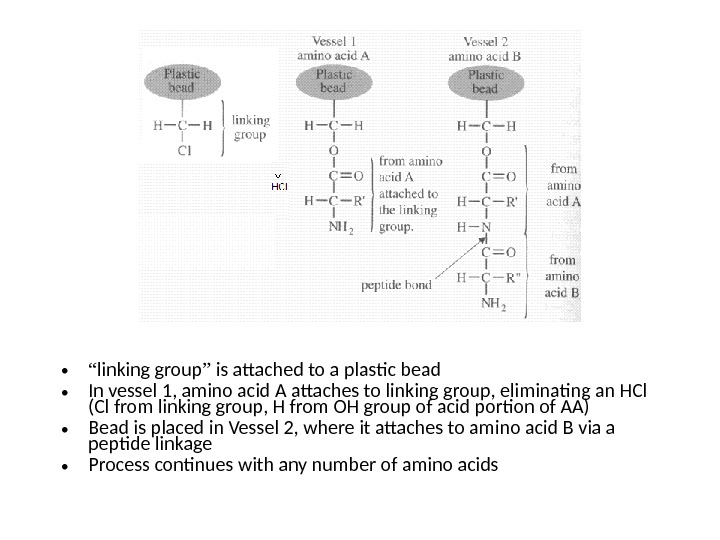 "• "" linking group "" is attached to a plastic bead • In vessel 1,"