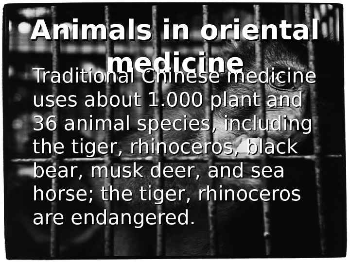 Animals in oriental medicine Traditional Chinese medicine uses about 1. 000 plant and 36 animal species,