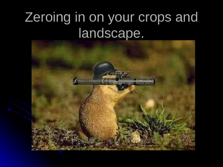 Zeroing in on your crops and landscape.
