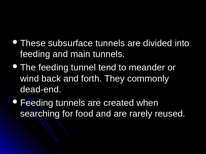 These subsurface tunnels are divided into feeding and main tunnels.  The feeding tunnel tend