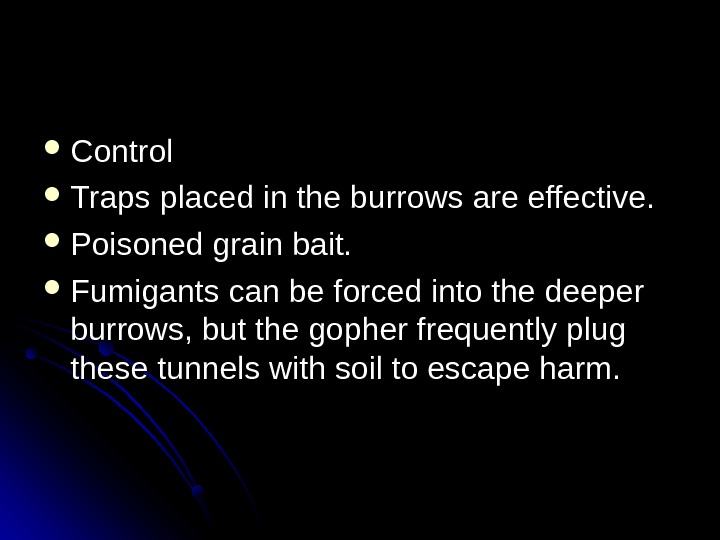 Control Traps placed in the burrows are effective.  Poisoned grain bait.  Fumigants can