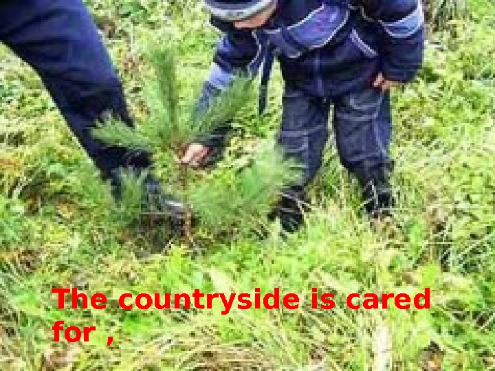The countryside is cared for ,