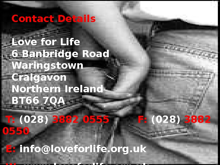 Contact Details Love for Life 6 Banbridge Road Waringstown Craigavon Northern Ireland BT 66 7 QA