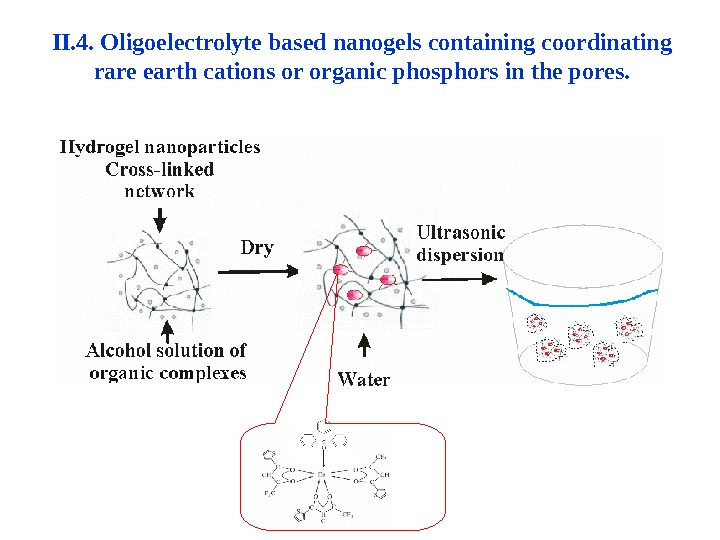II. 4.  Oligoelectrolyte based nanogels containing coordinating rare earth cations or organic phosphors in the