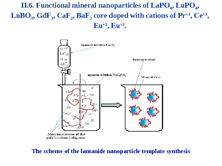 II. 6. Functional mineral nanoparticles of La. PO 4 ,  Lu. BO 3 ,