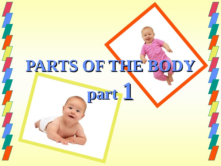 PARTS OF THE BODY part 11