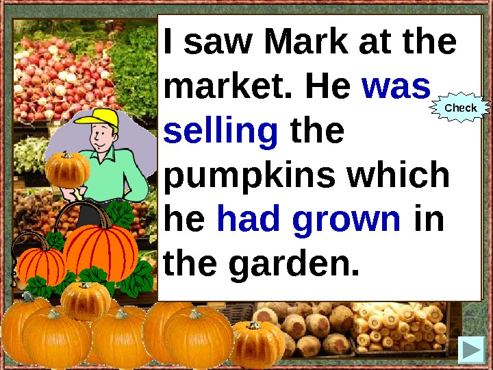 I saw Mark at the market. He (to sell) the pumpkins which he (to