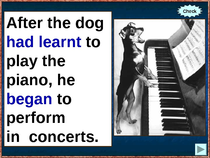 After the dog (to learn) to play the piano, he (to begin) to perform in