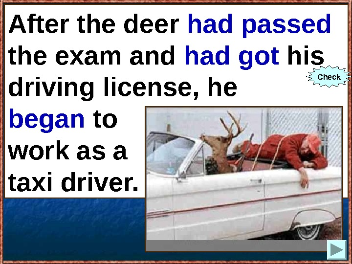 After the deer (to pass) the exam and (to get) his driving license, he (to