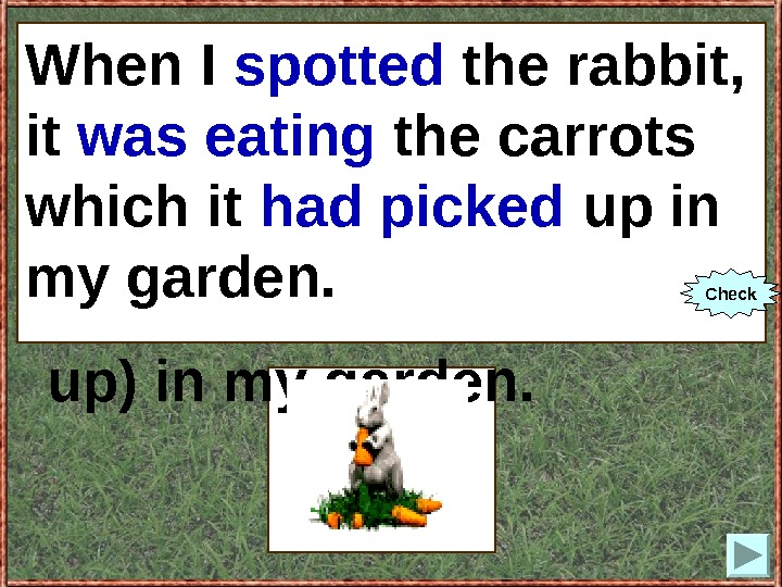 When I (to spot) the rabbit, it (to eat) the carrots which it (to