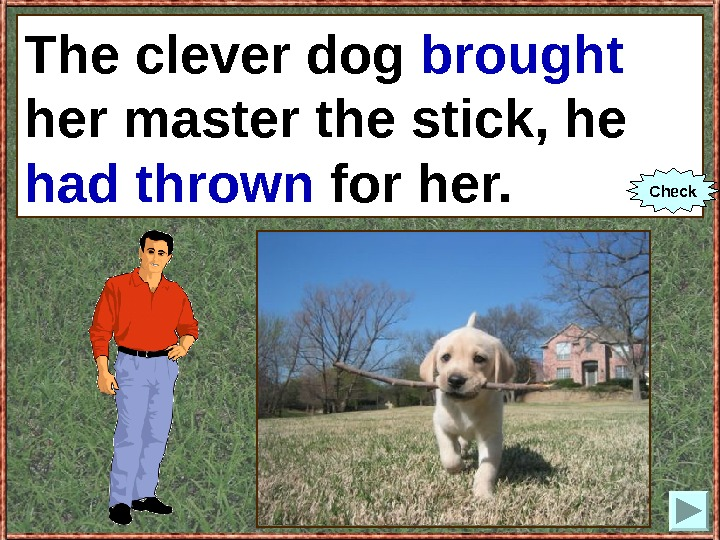 The clever dog (to bring) her master the stick, he (to throw) for her.