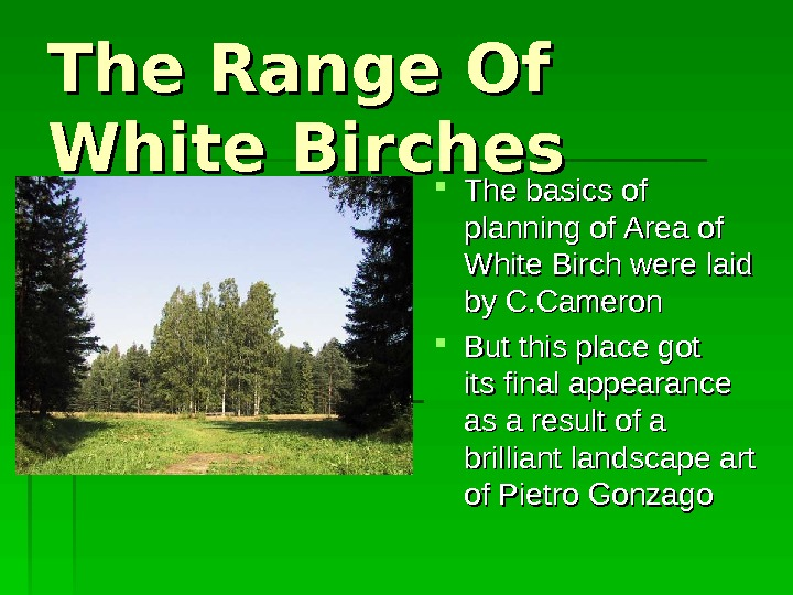 The Range Of White Birches The b asics of  pp lanning of of