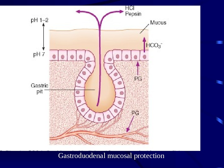 Gastroduodenal mucosal protection