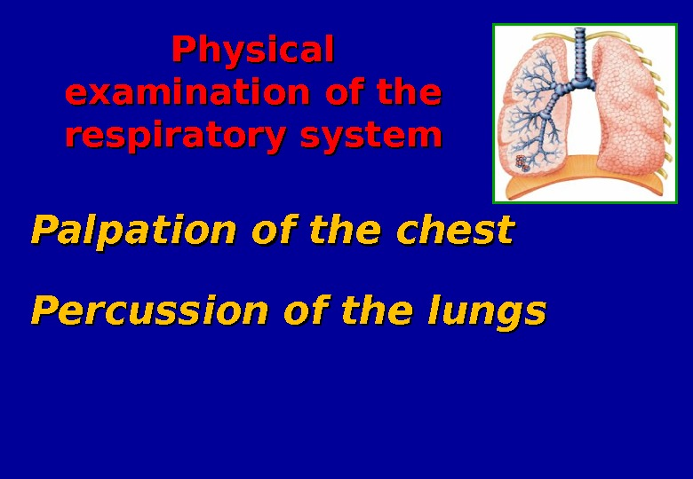 Percussion of the lungs Palpation of the chest Physical examination of the respiratory system