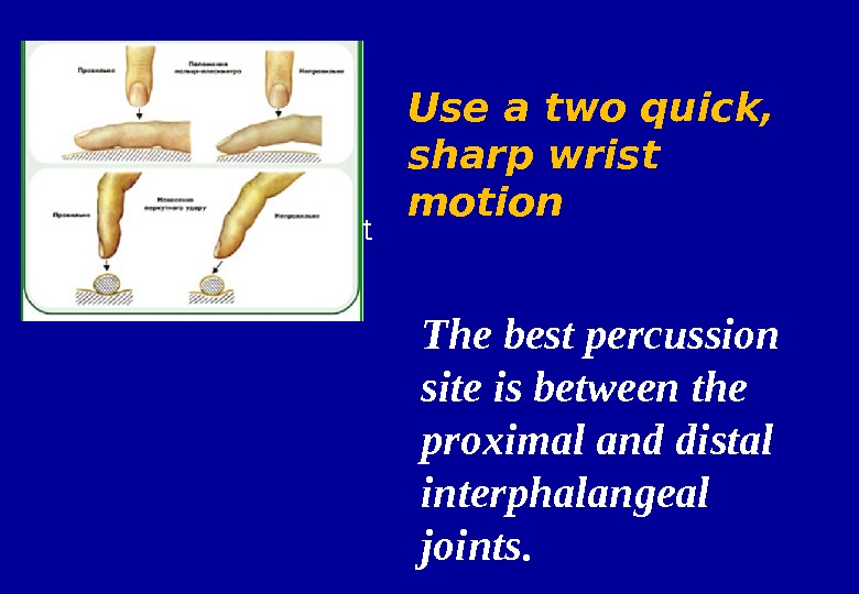 • Movement from wrist The best percussion site is between the proximal and distal interphalangeal