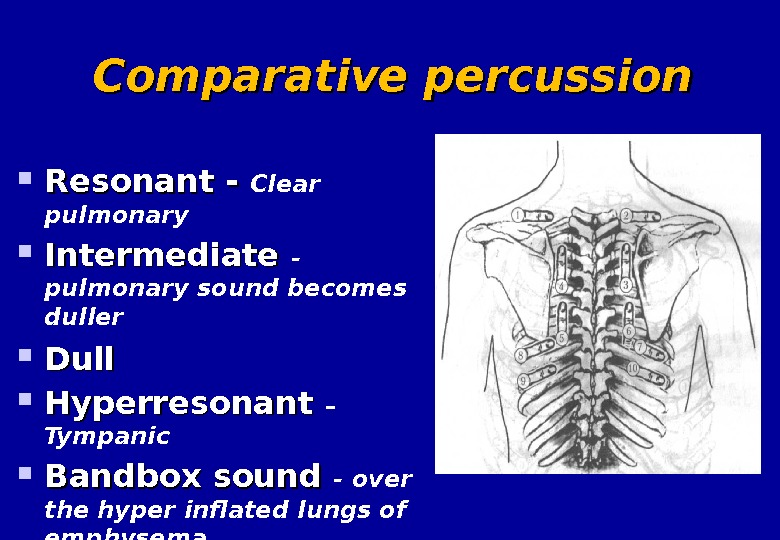 Comparative percussion Resonant - Clear pulmonary  Intermediate - pulmonary sound becomes duller Dull Hyperresonant –
