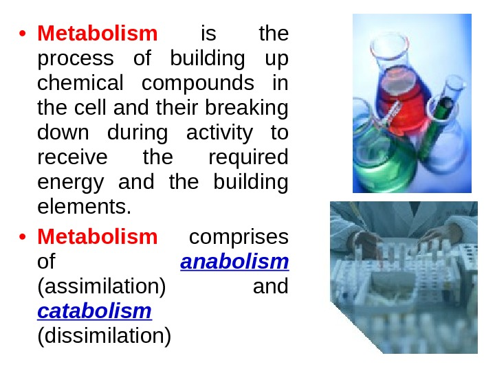 • Metabolism  is the process of building up chemical compounds in the cell and