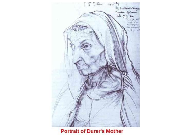 Portrait of Durer's Mother