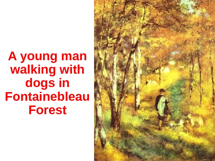 A y oung man walking with dogs in Fontainebleau Forest