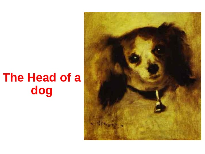 The Head of a dog